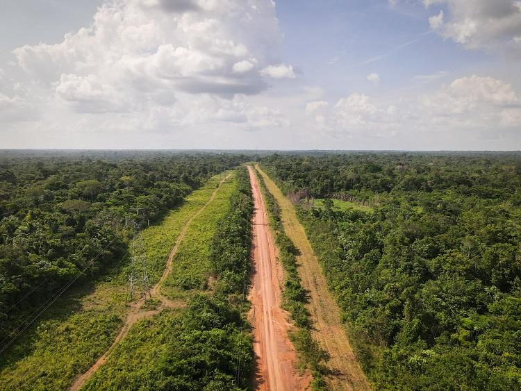 Brazilian Amazon. 1
